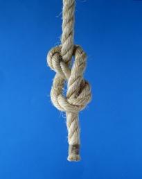 knot-figure-of-eight-blue-backdrop-1-AJHD